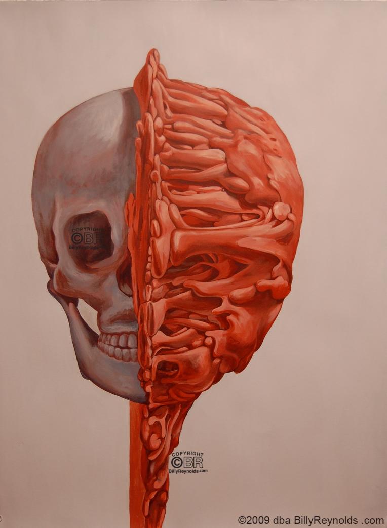 Skull-Clay-Front copy